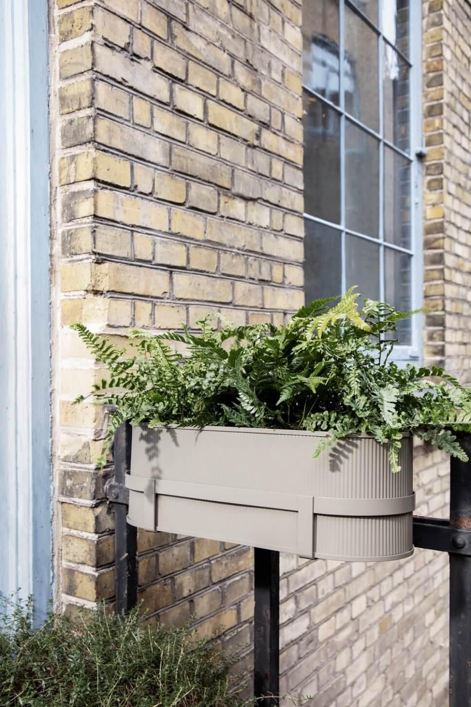 Mit Farn bepflanzter Balkonkasten auf Balkon