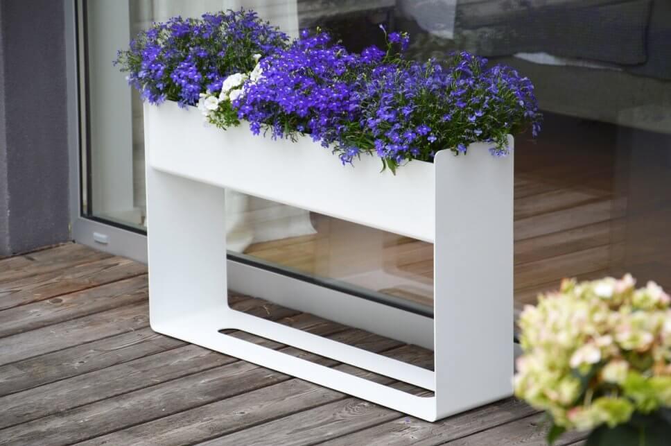 Üppig mit lila Blumen bepflanzter Pflanzkasten auf Terrasse