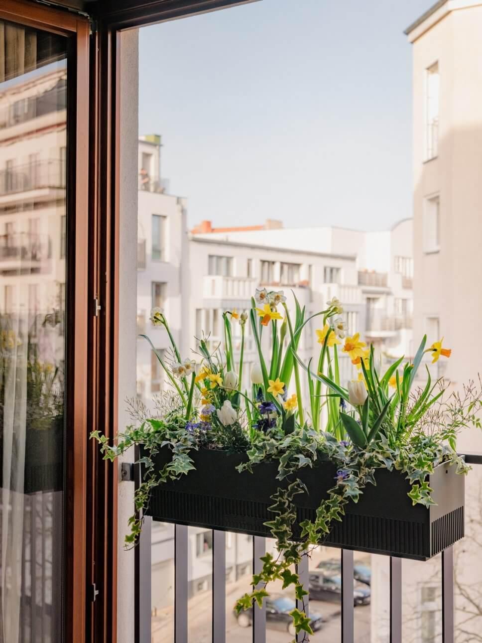 Üppig mit bunten Blumen bepflanzter Balkonkasten auf Balkon