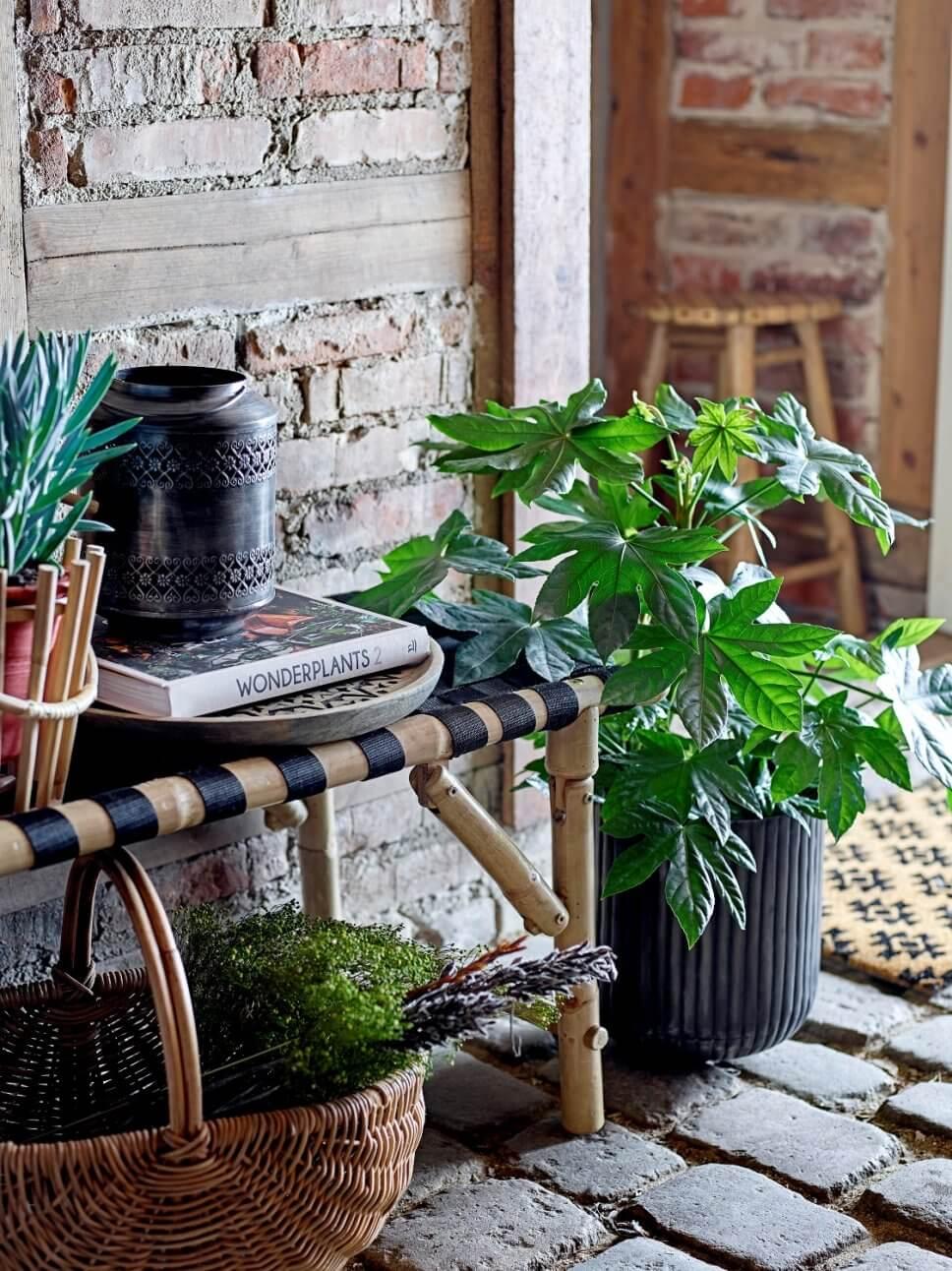 Mit Kübelpflanzen bepflanzte Bank auf Terrasse