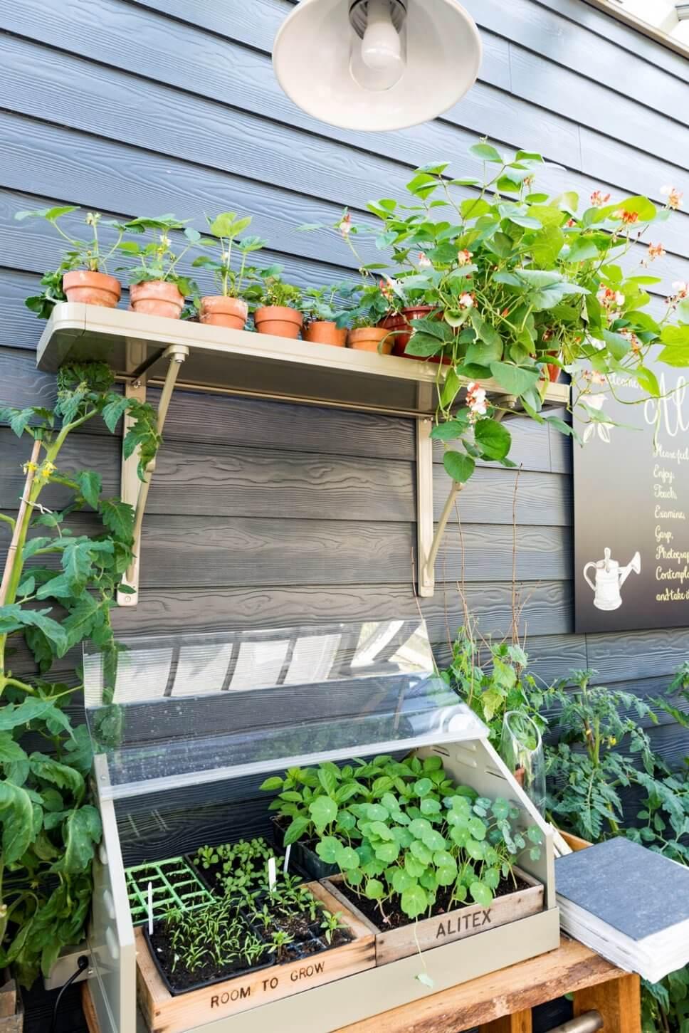 Miniaturgewächshaus mit kleinen Pflänzchen in Holzkisten und Tontöpfen