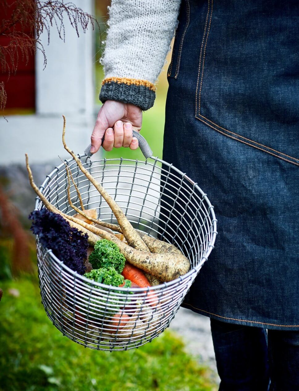 Frauenarm trägt Metallkorb mit frisch geerntetem Gemüse