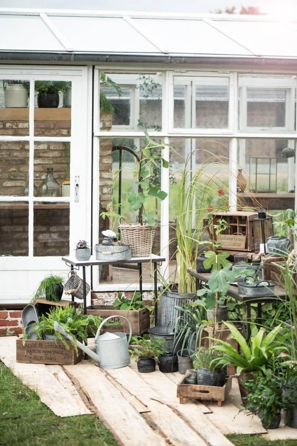 Üppig mit Kübelpflanzen bepflanzte Terrasse vor Gewächshaus