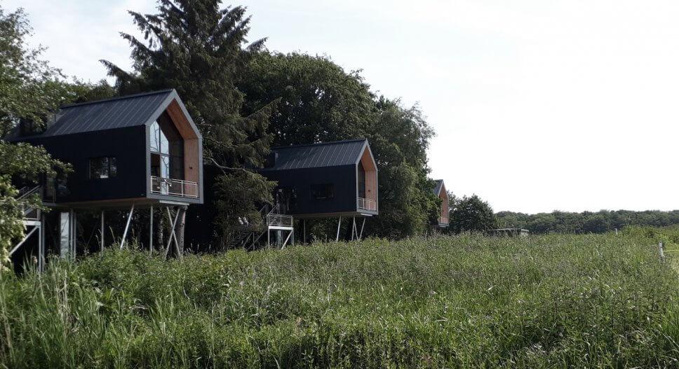 Großes Baumhaus zum Wohnen auf Stelzen an einer Lichtung