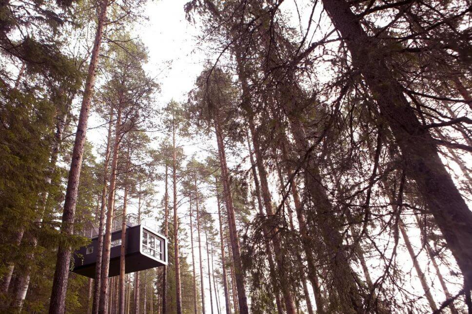 Großes Baumhaus in Form eines Caravans in den Baumwipfeln im Wald