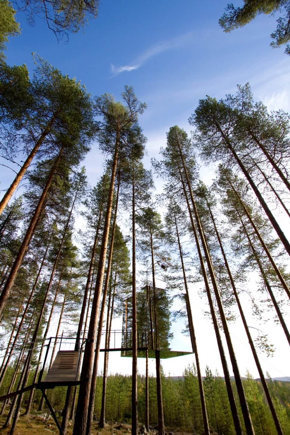 Großes verspiegeltes Baumhaus zum Wohnen im Wald