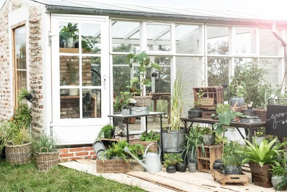 Üppig mit Kübelpflanzen bepflanzte Terrasse vor altem Gewächshaus