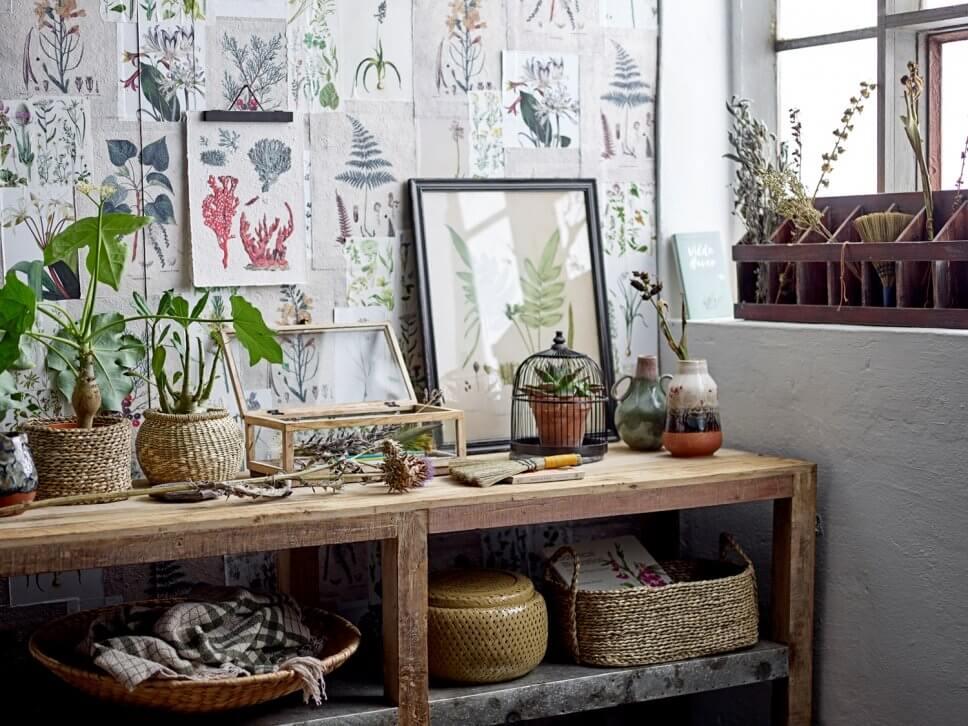 Pflanzen stehen auf massiver Holzkonsole,, die Wand ist mit Drucken von Pflanzen zugepflastert t
