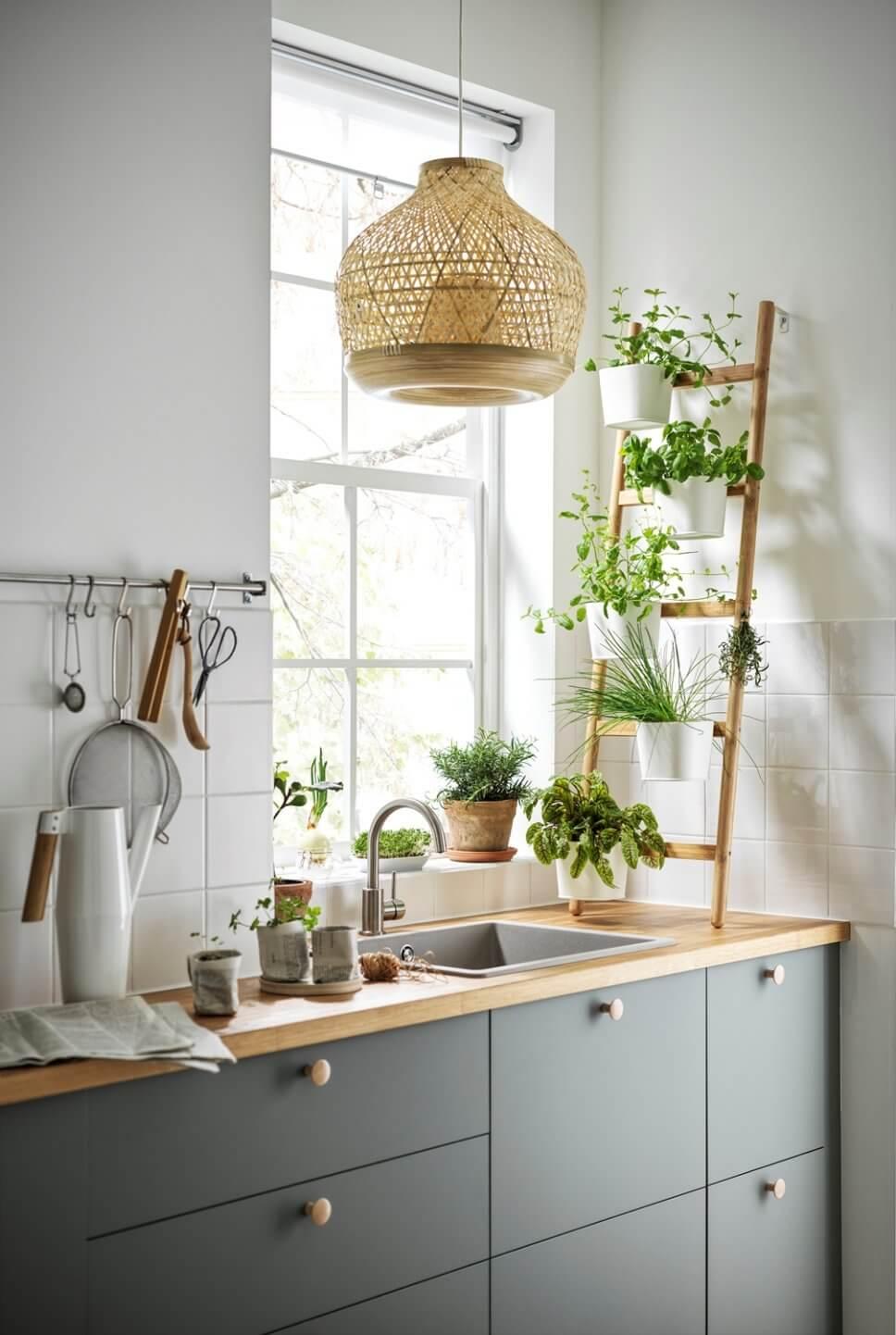 Moderne kleine Küche mit viel Pflanzenleiter