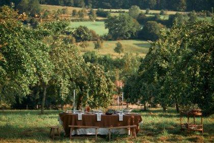 Herbstlich gedeckter Tisch auf Wiese unter Apfelbäumen